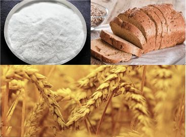 Xylanase for wheat flour and baking, food additives