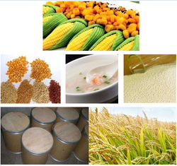 Phytase improve feed phosphate utilization , feed additives